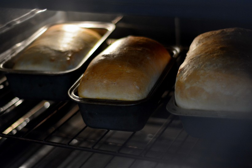 breadintheoven