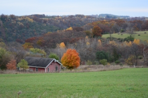 And life in the beautiful driftless region of Wisconsin!